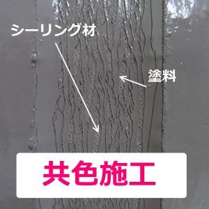 14_10_035508.jpg