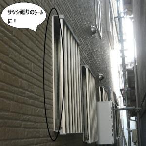 8_8_171301.jpg